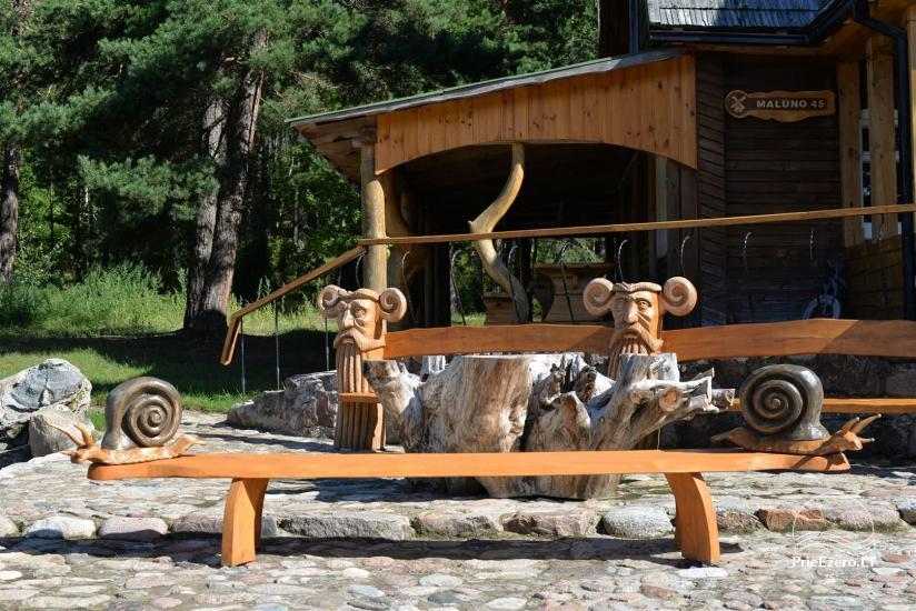 Lauku sēta Atpūta priežu mežā pie ezera - 8