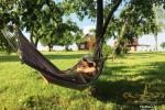 Lauku saimniecība - Linden Shore - 4
