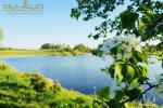 Lauku saimniecība - Linden Shore - 11