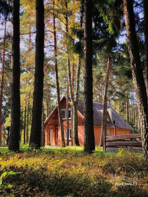 Tiek izīrēta lauku sēta netālu no ezera Lietuvā - 8