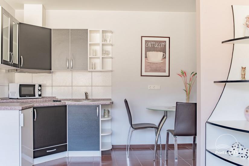 SR Apartments - Druskininkai - īrējams dzīvoklis Druskininkos - 6