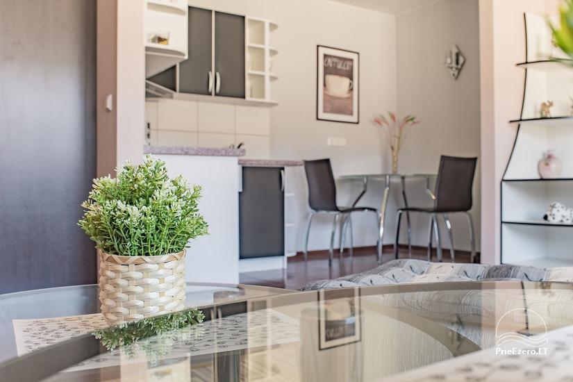 SR Apartments - Druskininkai - īrējams dzīvoklis Druskininkos - 7