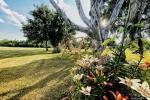 Lauku sēta Didvejo ar dīķi pagalmā - 5