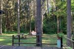 Vasaras māja Birštonā, meža ielokā