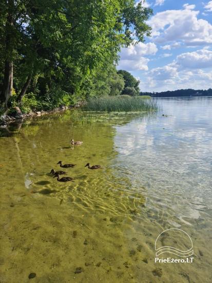 Brīvdienu māja ezera krastā Volungė - 28