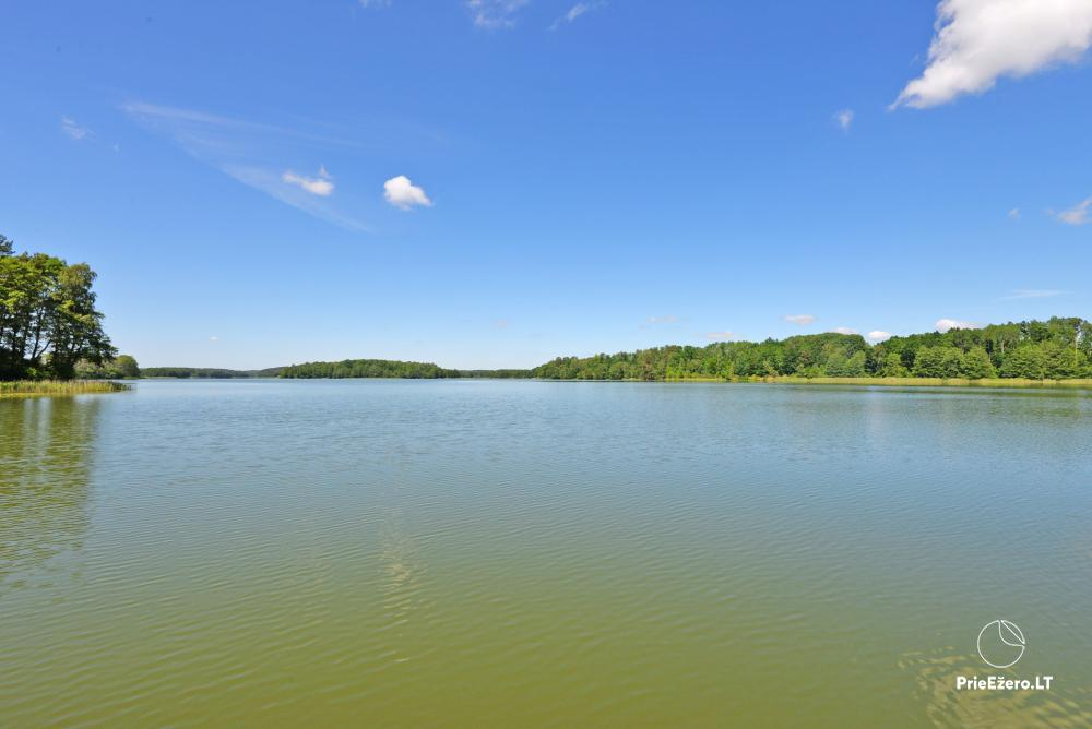 Lauku sēta pie Veisiejis Rita ezera - 33