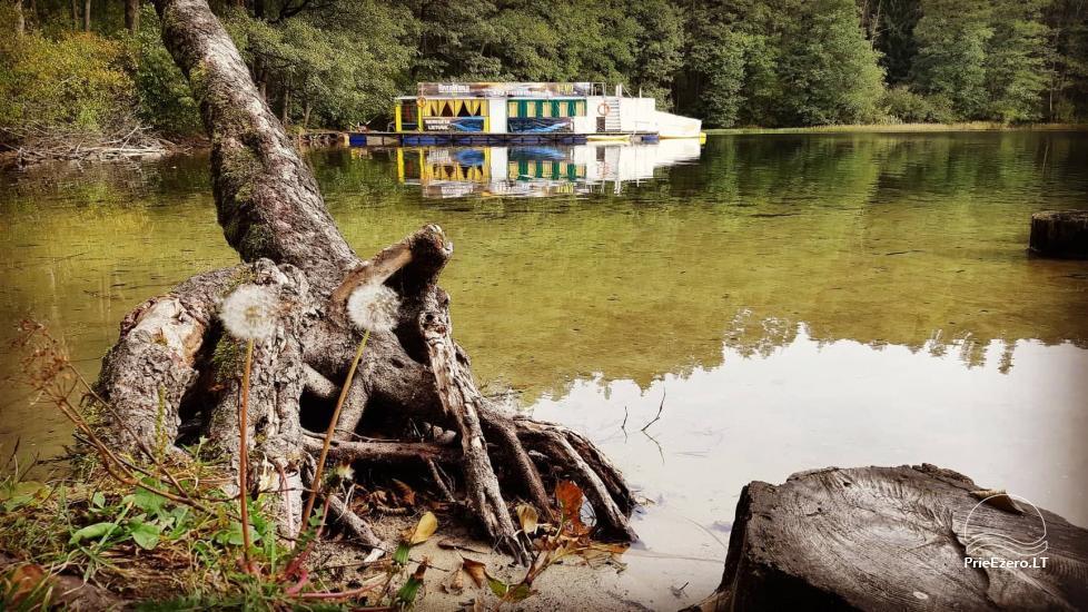 Plosta NEMO noma Aviris ezerā: naktsmītnes, ēdināšana, sauna, svinības! - 44