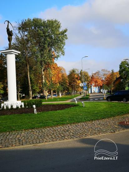 Mājīgs dzīvoklis Druskininku centrā - 9