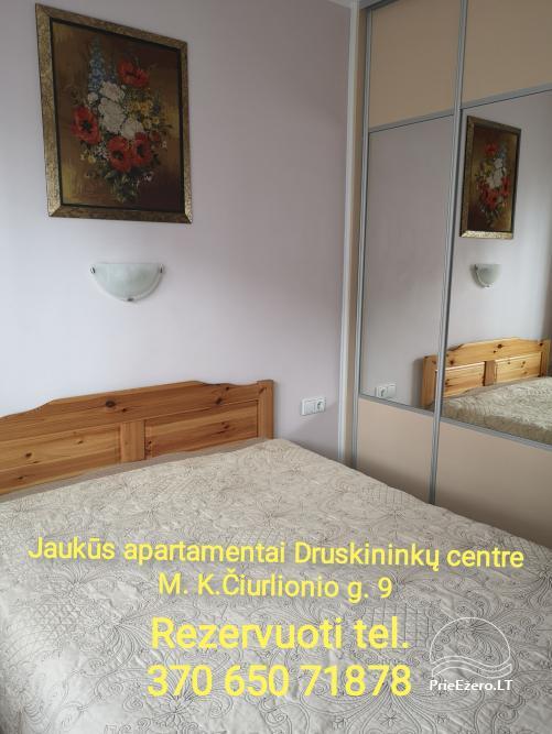 Mājīgs dzīvoklis Druskininku centrā - 12