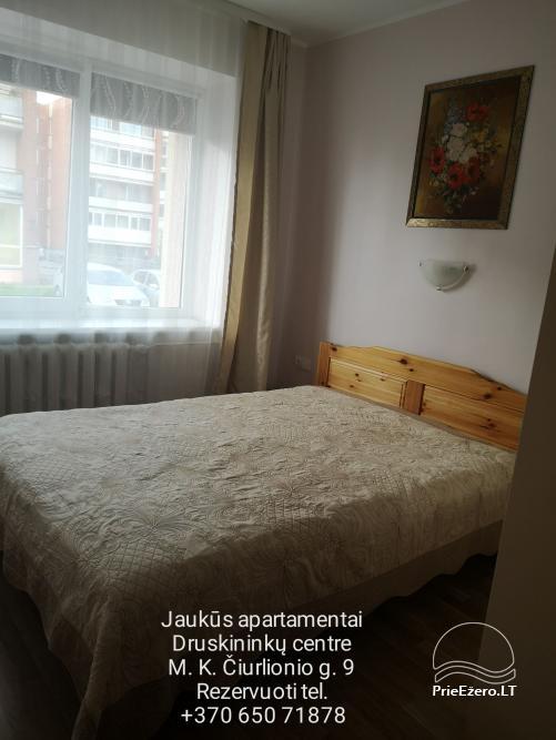 Mājīgs dzīvoklis Druskininku centrā - 13