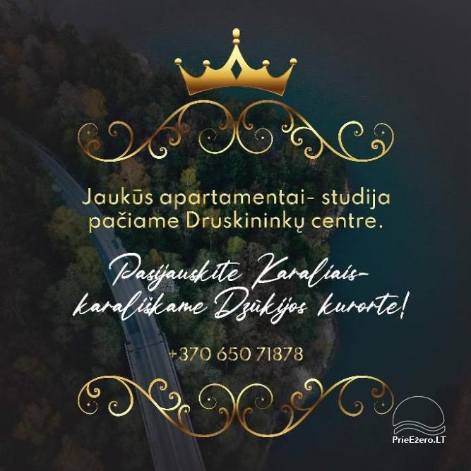 Mājīgs dzīvoklis Druskininku centrā - 15