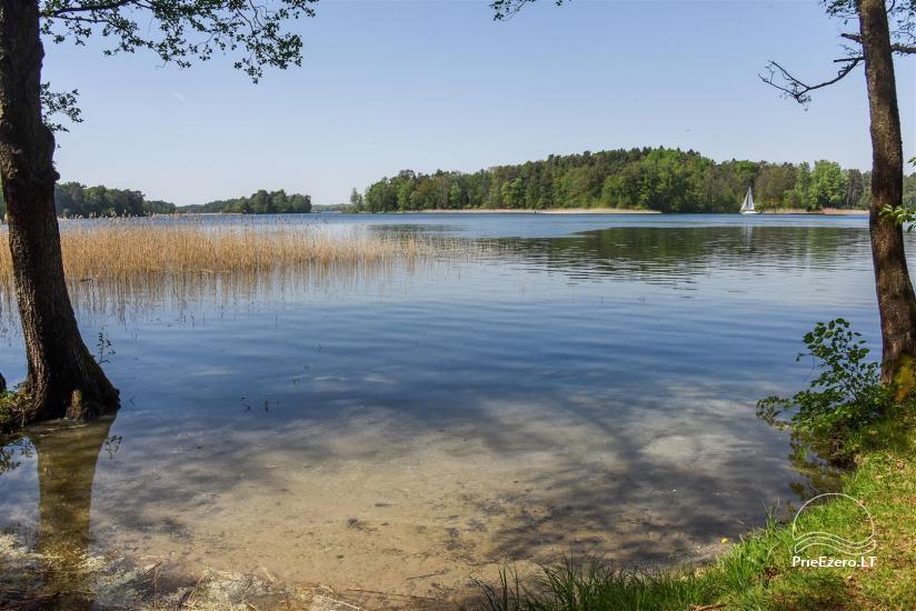 Medus pirts Trakai pie ezera Skasitis - 33