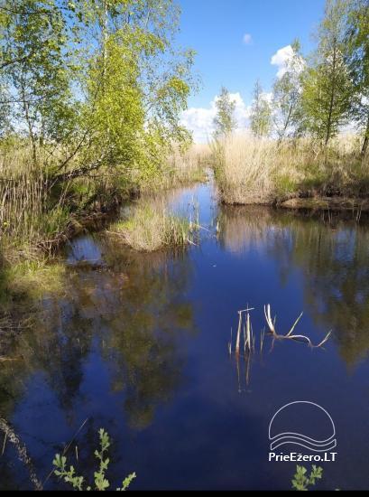Papes ezera sonāte  tieši pie ezera, netālu no jūras - 4