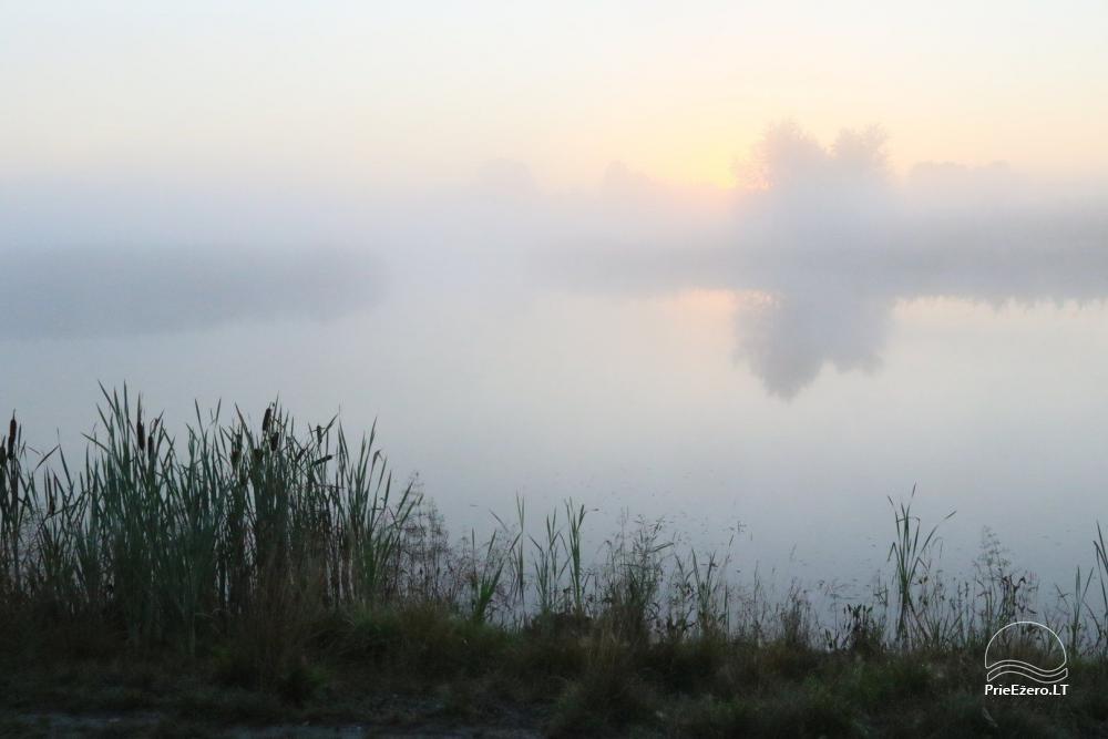 Sēta Ignalinas rajonā dīķa krastā Ažvinčių sodyba - 25