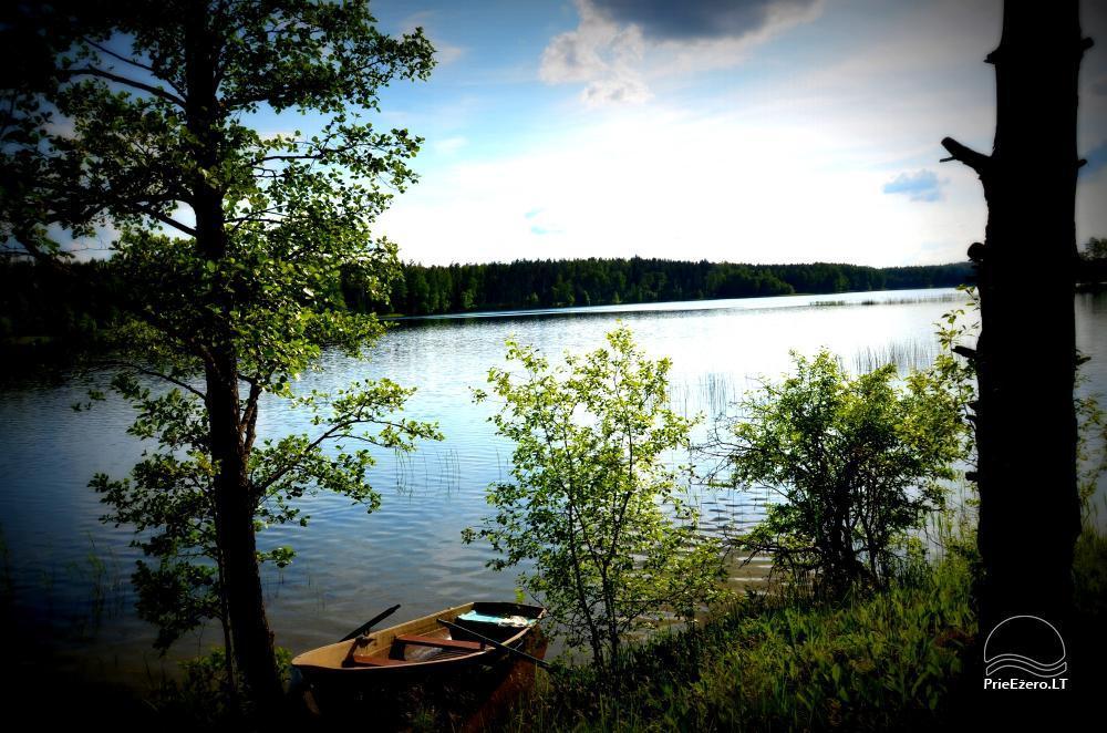 Sēta Vila Labanoras pie Rašia ezera - 1