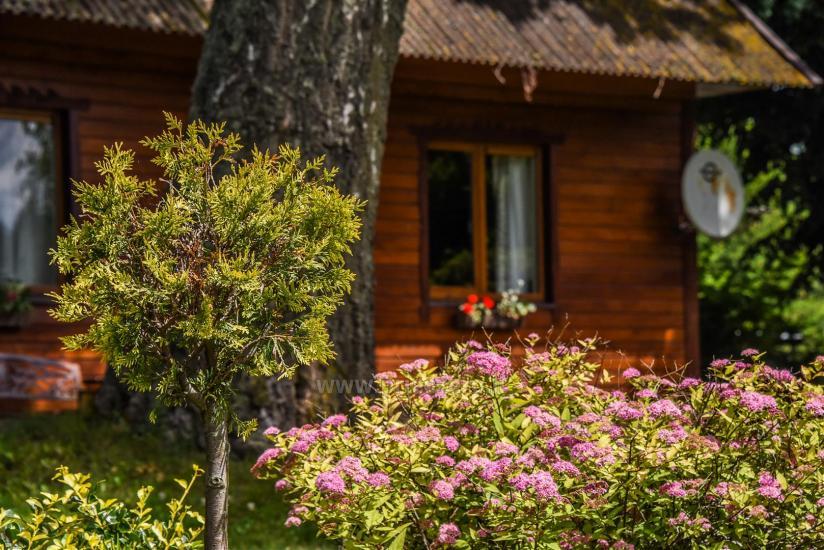 Sovai sēta pie ezera Traku rajonā, Lietuvā - 13