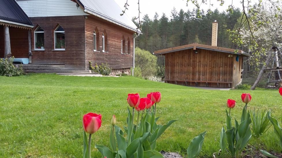 Lauku villa Vilnas rajona Neries vila - 4
