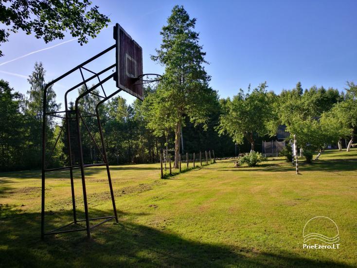 Vilius Vaicekauskas lauku seta - 4