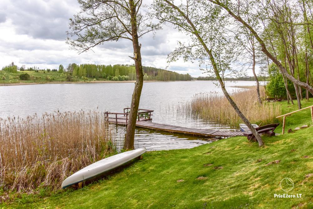 Brīvdienu mājas un pirts sētā Moletai rajonā pie ezera Geliai Žemuogynė - 24
