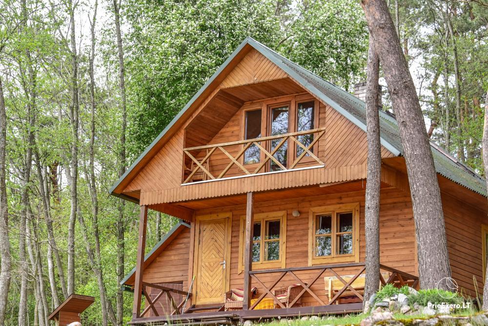 Brīvdienu mājas un pirts sētā Moletai rajonā pie ezera Geliai Žemuogynė - 18