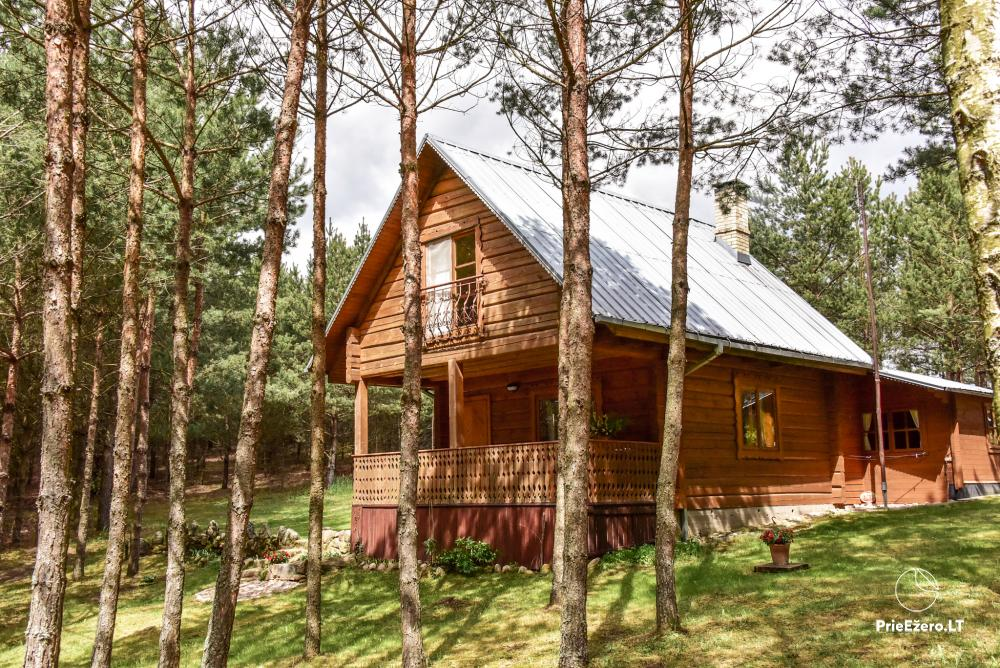 Brīvdienu mājas un pirts sētā Moletai rajonā pie ezera Geliai Žemuogynė - 1