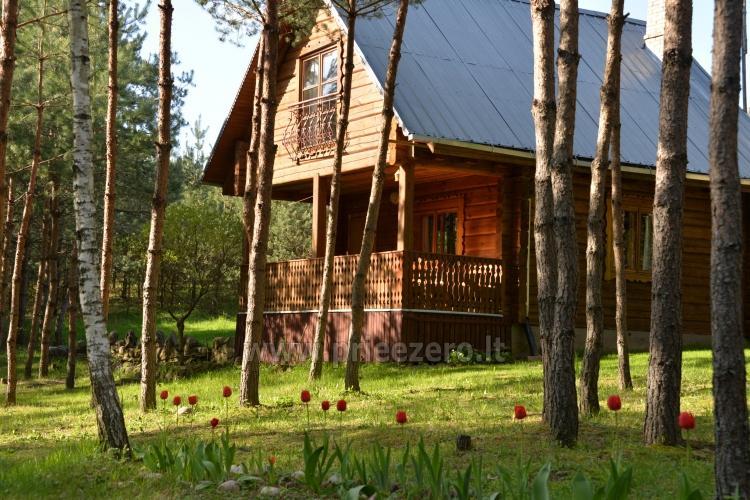 Brīvdienu mājas un pirts sētā Moletai rajonā pie ezera Geliai Žemuogynė - 4