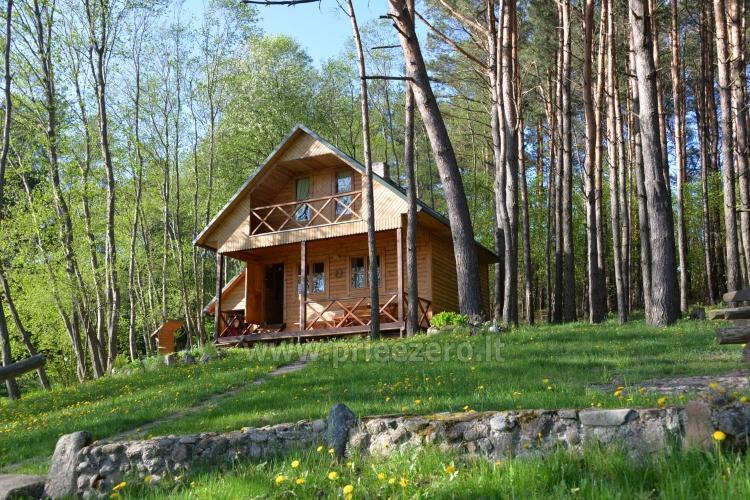Brīvdienu mājas un pirts sētā Moletai rajonā pie ezera Geliai Žemuogynė - 2