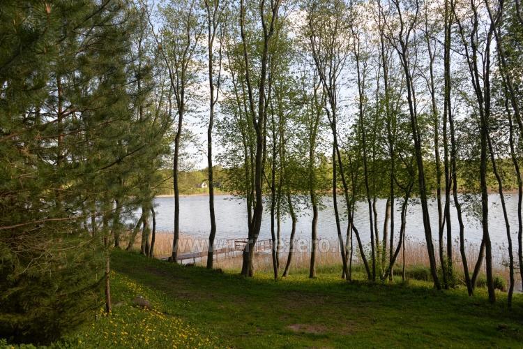 Brīvdienu mājas un pirts sētā Moletai rajonā pie ezera Geliai Žemuogynė - 30