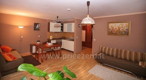 1-2 istabu dzīvokļi-apartamenti - atpūta Druskininkos, Lietuvā - 6