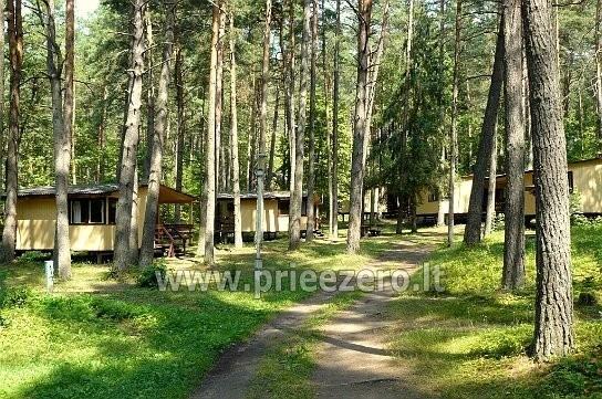 Atpūtas centrs Moletai pie ezera Bebrusai Rūta - 20