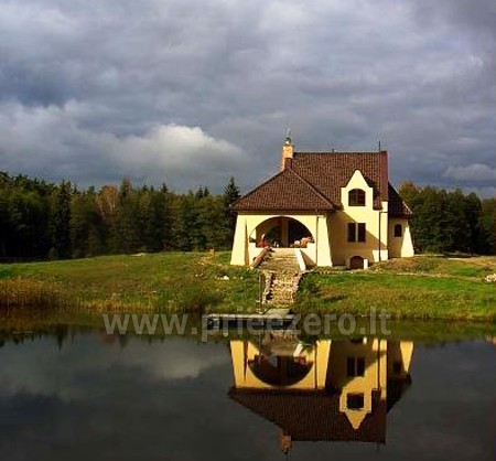Dom w lesie - 2