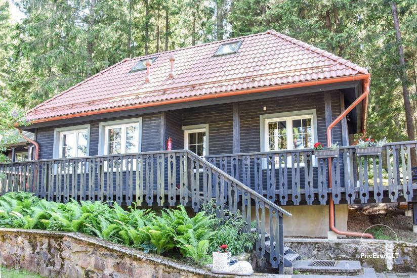 Brvdienu majas, apartamenti, pirts pie ezera Plateliai Lauku setāSaulės slėnis - 31