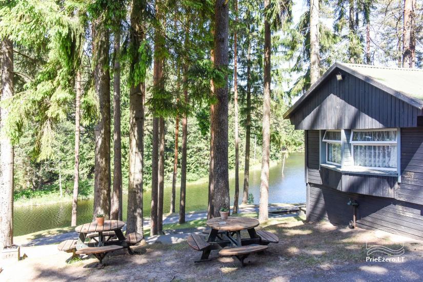 Brvdienu majas, apartamenti, pirts pie ezera Plateliai Lauku setāSaulės slėnis - 57
