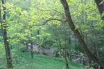 Viesu māja upes pusē Ratnyčėlė - 6