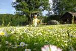 Lauku maja Akmendvaris Trakai rajona pie ezera Gilusis - 2