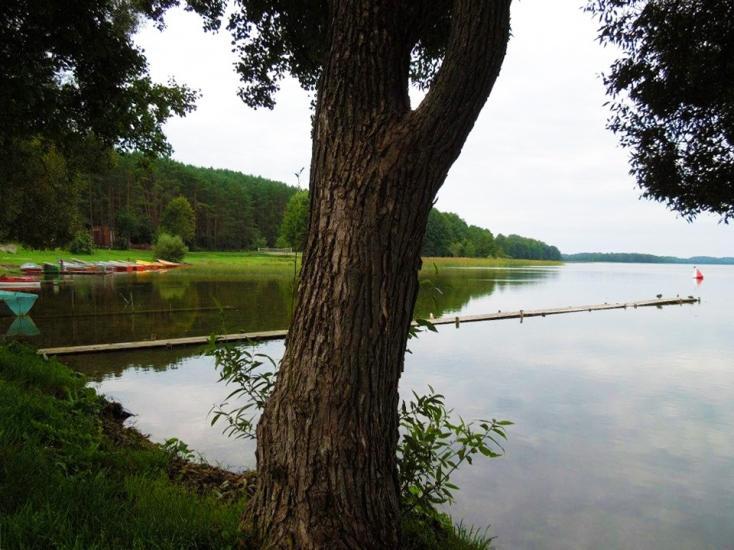 Lauku seta pie ezera Ignalinas rajona Karolio sodyba - 11