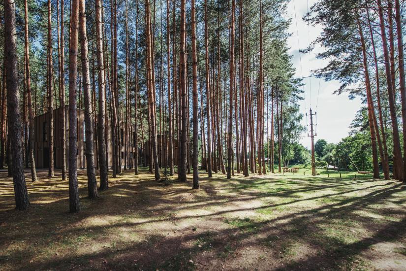 Lauku seta Anyksciai rajona Pusu takas - 16