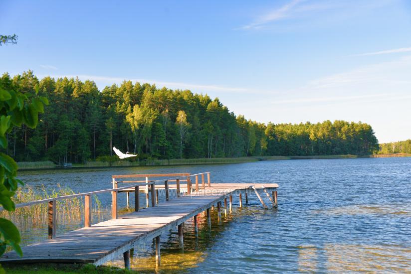 Lauku tūrisms ezera Bebrusai - 12