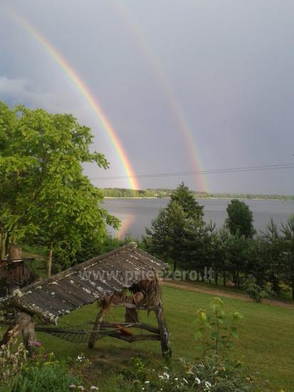Lauku seta Žališkė pie ezera Babrai, jo Lazdijai jomā - 5