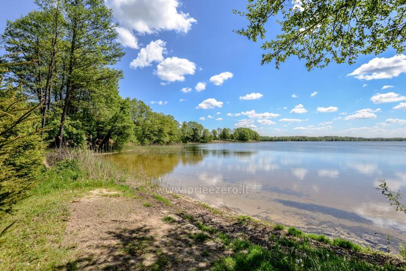 Lauku seta Žališkė pie ezera Babrai, jo Lazdijai jomā - 15