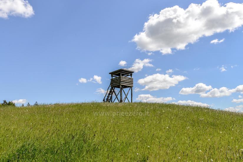 Lauku seta Žališkė pie ezera Babrai, jo Lazdijai jomā - 18