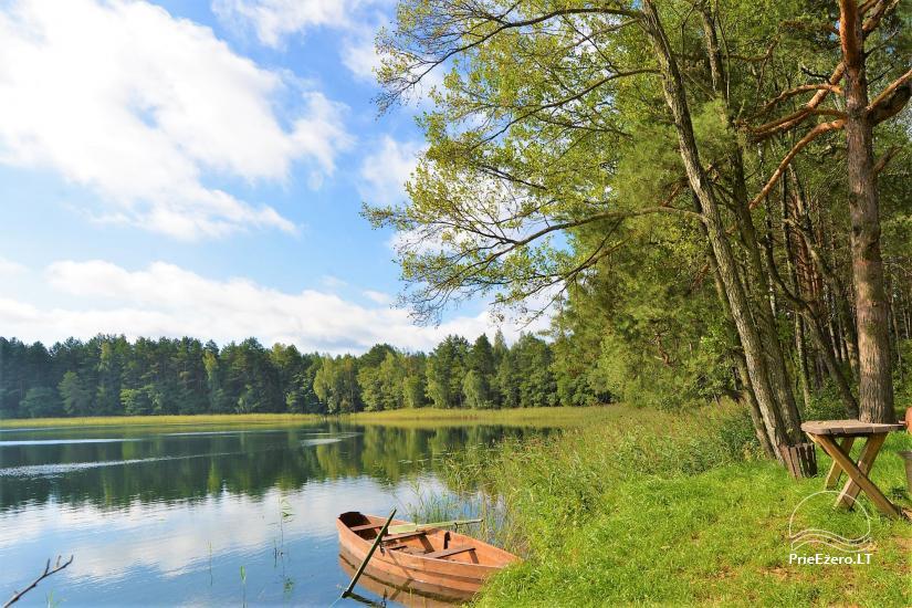 Viensēta pie ezera, kas Lazdijai jomā Tėviškė - 25