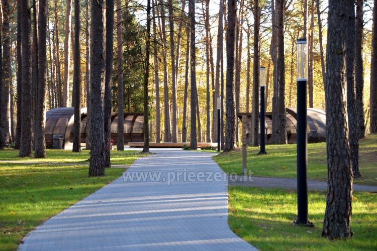 K. Dineika wellness parks Druskininkos - 8