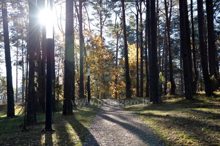 K. Dineika wellness parks Druskininkos - 24