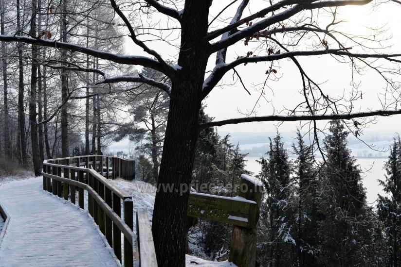 Kadiķu ieleja Kauņā lagūnas reģionālo parku - 27