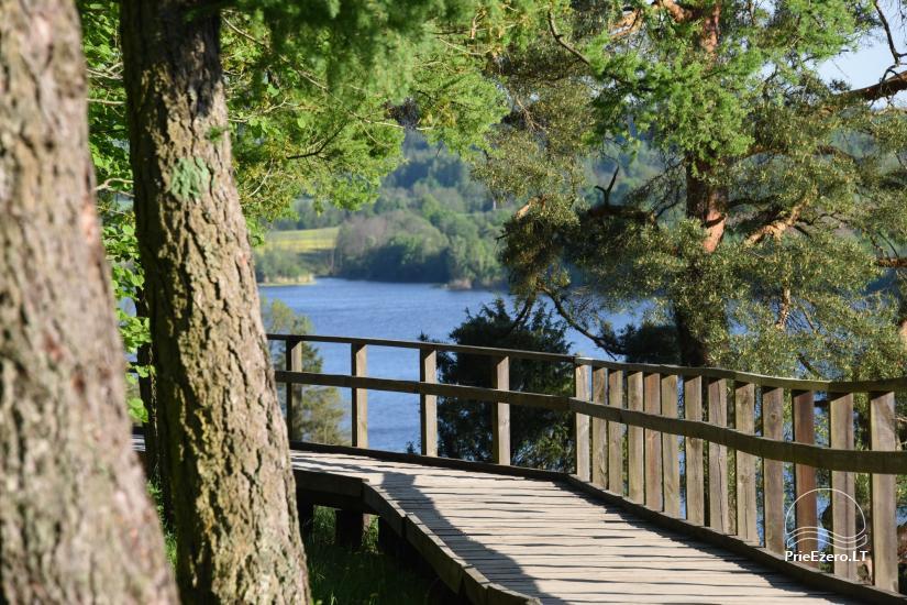 Kadiķu ieleja Kauņā lagūnas reģionālo parku - 1