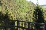 Kadiķu ieleja Kauņā lagūnas reģionālo parku - 5