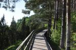 Kadiķu ieleja Kauņā lagūnas reģionālo parku - 10