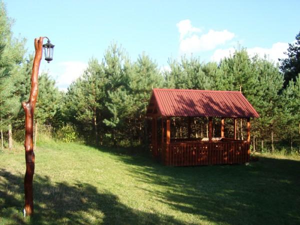 Pirts, biljards, galda teniss lauku setā pie ezera Žemuogynė - 4
