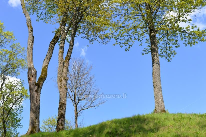 Veliuona pilskalns, Jurbarkas rajons - 15